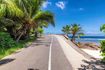 Fototapete - Road trip. Beach palms road in paradise island, Mahe, Seychelles