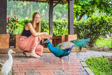 Young woman looks at a peacock in the park