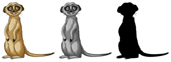 Set of meerkat cartoon character