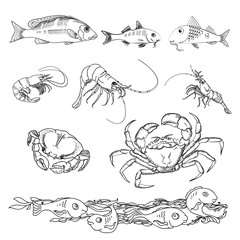 Set of various sea creatures icons. Vector.