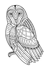 Owl hand drawn illustration for coloring book