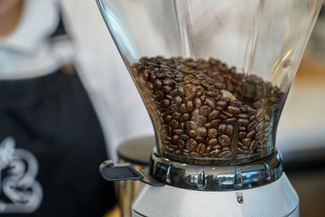 coffee beans in coffee grinder machine