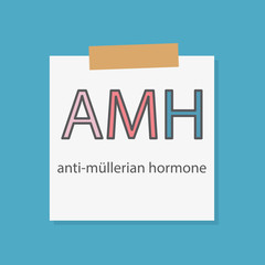 AMH Anti-Müllerian hormone written on a notebook paper- vector illustration