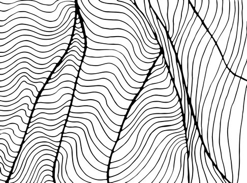 Waves abstract decorative ornament coloring page. Doodle decorative element texture. Isolated pattern. Vector hand drawn  fantasy wavy pattern.