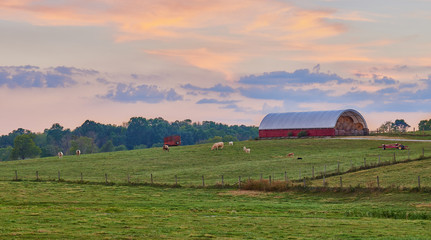 Kentucky Farm at Sunset Wall mural