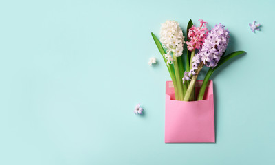 Spring hyacinth flowers in pink postal envelope over blue background with copy space. Top view, flat lay. Banner. Spring, summer or garden concept. Creative layout.