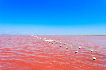 The salty lake with pink water and the beach from salt. Old logs pier on Lake Sasyk in the Crimea.