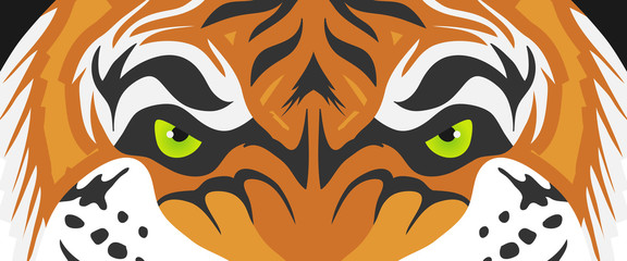 Tiger eyes, realistic tiger eyes. Cartoon face of a tiger. Vector.