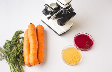 Testing raw vegetables for E.coli Escherichia and Staphylococcus