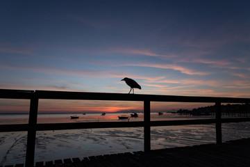 beautiful sunset on the pier of the guaratiba stone (pedra de guaratiba), in the west side of rio de janeiro, brazil