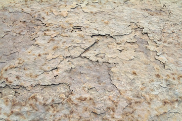 abstract rock surface detail