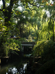 Warm sunny evening in traditional Chinese garden
