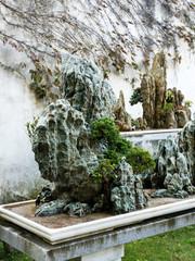 Miniature rock garden oriental bonsai installation