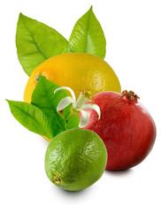 Fototapete - isolated image of avocado, orange, apple closeup