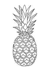 Pineapple doodle, hand drawn with brush pen