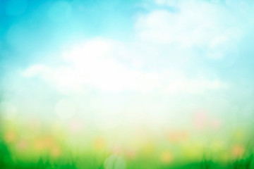 abstract nature spring background with green grass and blue sky