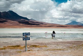 Girl taking a photo of flamingos