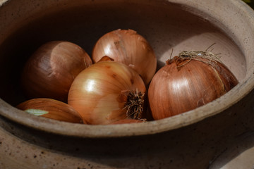 brazilian onions 2