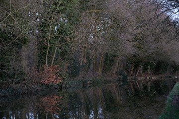 Canal reflection 1