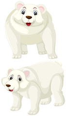 Set of polar bear character