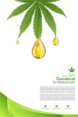 Marijuana plant and cannabis oil drop vector.