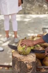 Partiendo coco