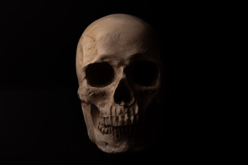 A realistic human skull is isolated on black background. It looks straight - frontal view.  Its teeth are visible. The jaw is closed. Close up.