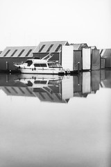 Harbor Reflection V