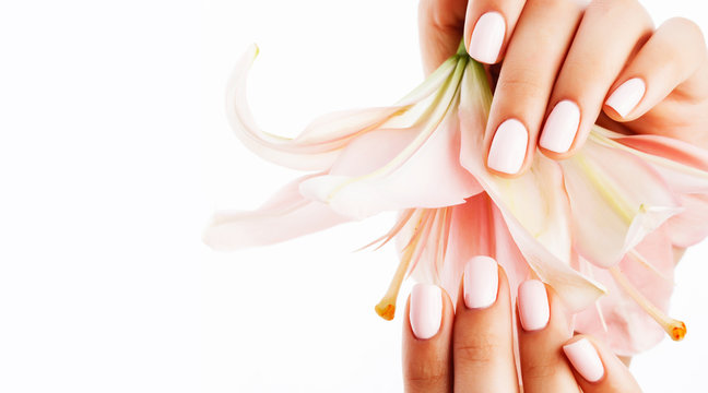 beauty delicate hands with manicure holding flower lily close up isolated
