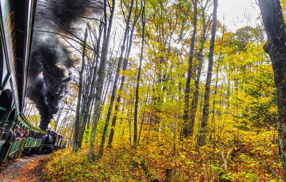 An old vintage train with thick black smoke making its way through the forest in West Virginia, with beautiful fall colors and foliage. Shot near Cass, WV, USA.