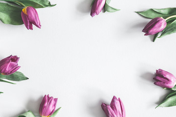 Flowers composition. Purple tulip flowers on pastel gray background. Valentines day, mothers day, womens day, spring concept. Flat lay, top view, copy space