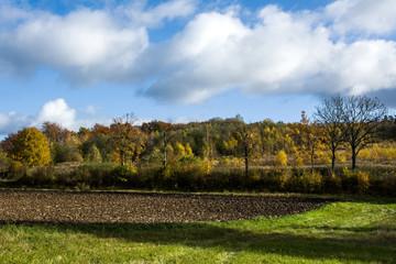 piękny jesienny krajobraz, pole i las
