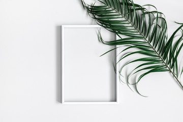 Summer composition. Tropical palm leaves, white photo frame on pastel gray background. Summer, nature concept. Flat lay, top view, copy space