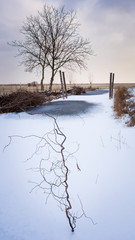 small pond with ice in winter