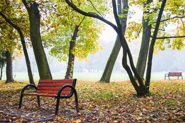 piękna jesień w parku, ławka, mgła