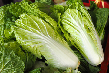 fresh chinese cabbage on wooden table