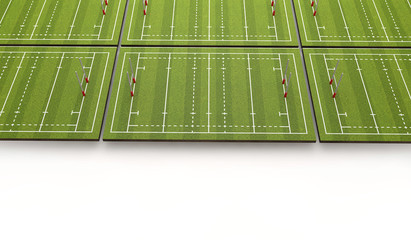 Rugby pitch with lines and goals. 3D Rendering