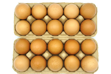 20 Chicken eggs in  box