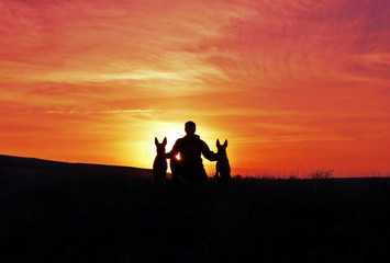 The man and the dog on the background of the unlikely sunset