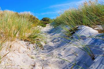 Hiddensee Strand - Hiddensee sandy beach in summer