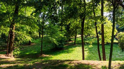 Park at the Piastow housing estate, Kraków, Poland