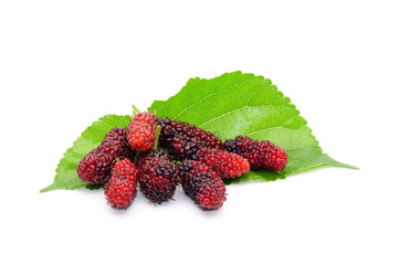 Mulberry : Fresh mulberries with green leaves isolated on white background.