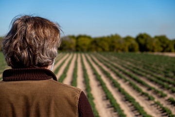 Rear view of a farmer observing his crops