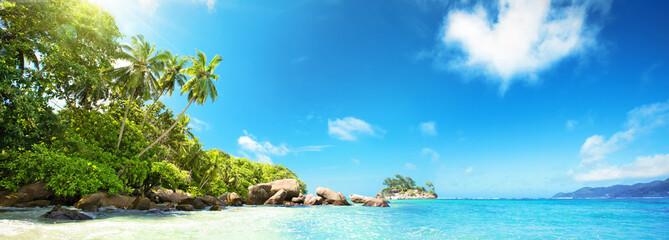 Seychelles Islands. Palm Beach In Tropical Paradise