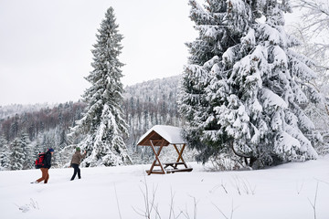 Fototapete - Couple walking to a shelter while hiking in winter