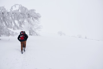 Fototapete - Couple hiking along a snowy trail in the wintertime