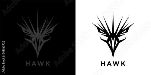 Abstract style eagle logo template design  Predator bird
