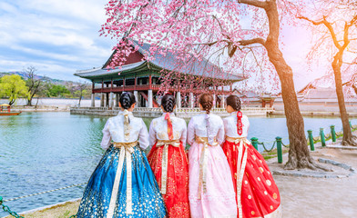 Aluminium Prints Seoul Cherry Blossom with Korean national dress at Gyeongbokgung Palace Seoul,South Korea