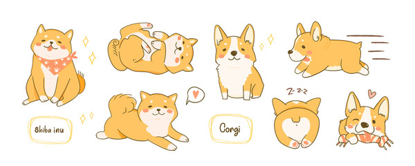 Kawaii playful Corgi and Shiba Inu dogs in various poses. Hand drawn colored vector set. All elements are isolated