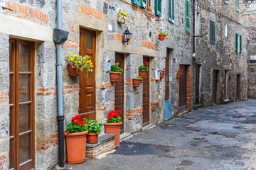 Flowers in pots on a street